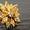 Куплю золото, лом,  золотые коронки, серебро  #1336629