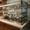 Холодильники Ташкент,  торговое оборудование в Ташкенте,  Витринные холодильники Т #1637513