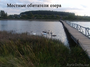 Жилой кирпичный дом на берегу озера. Беларусь - Изображение #9, Объявление #1600463