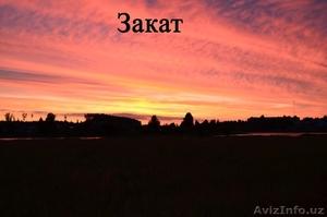 Жилой кирпичный дом на берегу озера. Беларусь - Изображение #10, Объявление #1600463