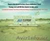 перевозка консолоидации грузов из Китая до Ташкета