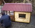 Вольер, будка для собак 940-90-48 в Ташкенте - Изображение #3, Объявление #574276