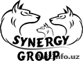 SYNERGY GROUP COMPANY