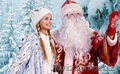 Дед Мороз и Снегурочка для детей домой,  в школу,  в сад!