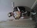 Корнавальный кастюм для принц