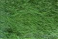 Новый искусственный газон из Турции — Ultra Spine - Изображение #3, Объявление #1317080