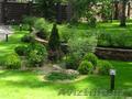 Газон, озеленение за 1 день в Ташкенте! Недорого.+998903478802