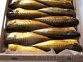 продаю рыбу холодного копчения (селёдка,  скумбрия)