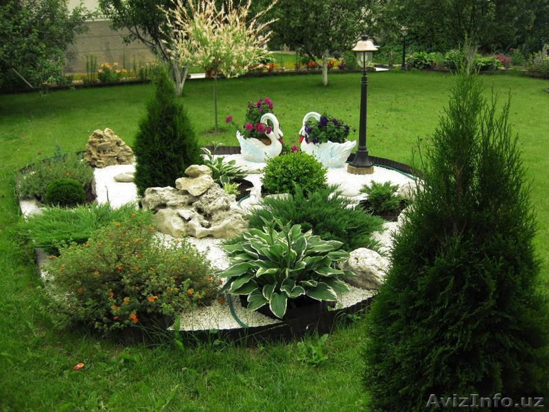 ИАП газон и декор двора фото (содержание драгметалла одном