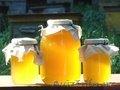 Ищу реализаторов мёда