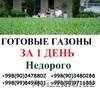 Ташкент -Газоны посев и готовые газоны в рулона