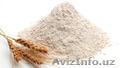 Продам пшеничная мука 1с (первый сорт),  экспорт (FCA,  DAF,  FOB,  CFR,  CIF)