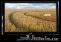 Монитор Acer V226HQLBD 21, 5