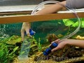 Очистка аквариума. - Изображение #5, Объявление #1598966