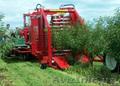 Однорядный прицепной комбайн для уборки вишни FELIX/Z - Изображение #2, Объявление #1601510