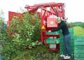 Однорядный прицепной комбайн для уборки вишни FELIX/Z - Изображение #3, Объявление #1601510