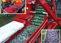 Стряхивающий и очищающий агрегат для уборки вишни и слив MAJA - Изображение #3, Объявление #1601512