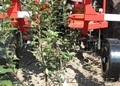 Пропалыватель междурядья садовый ZUZA-3 - Изображение #2, Объявление #1601501