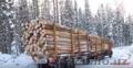 Качественный лес из регионов Дальнего Востока России - Изображение #6, Объявление #1605442