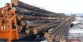 Качественный лес из регионов Дальнего Востока России - Изображение #3, Объявление #1605442