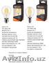LED лампы WOLTA филамент