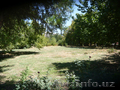 3 гектара Учтепинский район  ул. Фархадская 2500000 - Изображение #7, Объявление #1628062